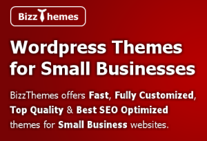 What is BizzThemes?