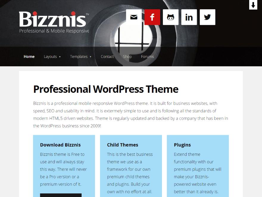WordPress Developer Theme for Pros
